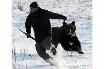 Поржать - подготовка к зимним олимпийским играм.jpeg